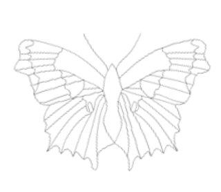 perhonen2.JPG
