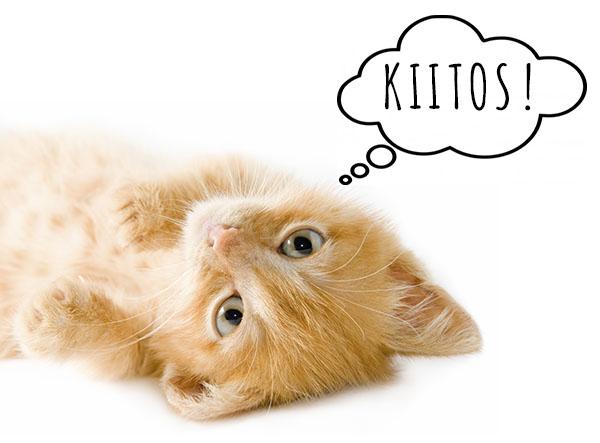 kissan_kiitos