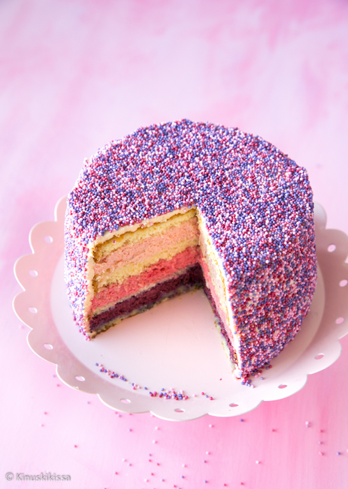 nonparelli-kakku-2